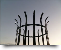 Metal Tree Guard - Electro galvanised with black powder coated finish